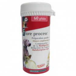 FLORE PROCESS CHIEN CHAT PILULIER 60 GEL