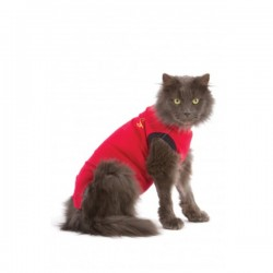 MEDICAL PET SHIRT CHAT T XS